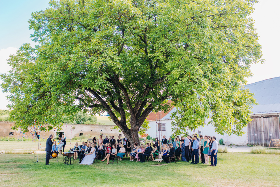 277-svatebni-obrad-pod-stromem