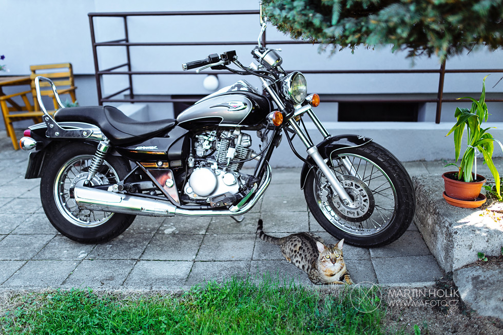 motorka-a-pan-mlady-kocour